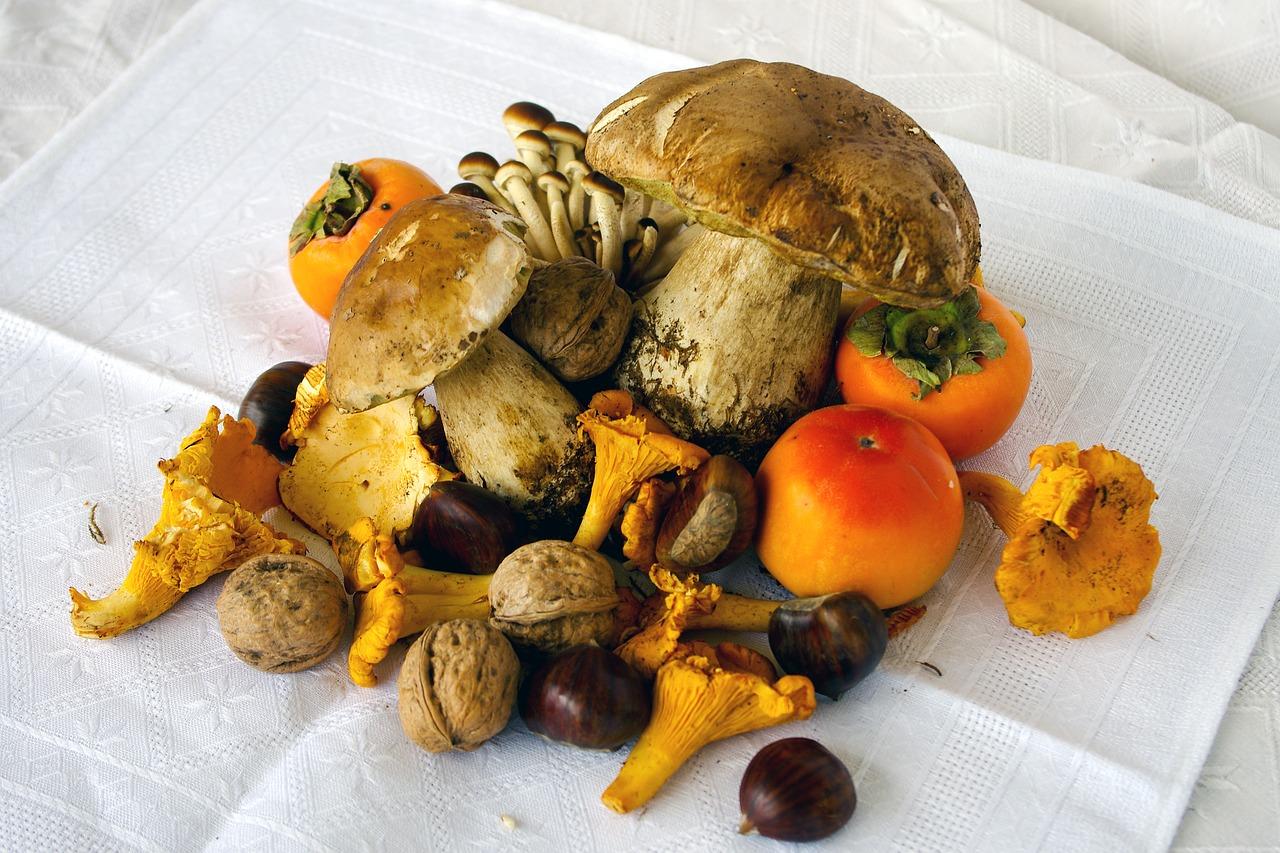 Gastronomie cèpes et girolles