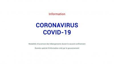 Info Pros COVID-19 #29